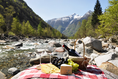 mtn-picnic-390x260