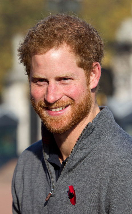 rs_464x749-151101121154-634.prince-harry.cm.11115